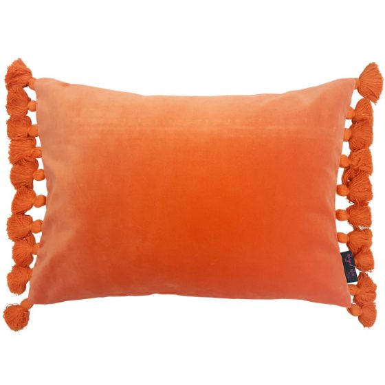 Orange velvet tassel cushion