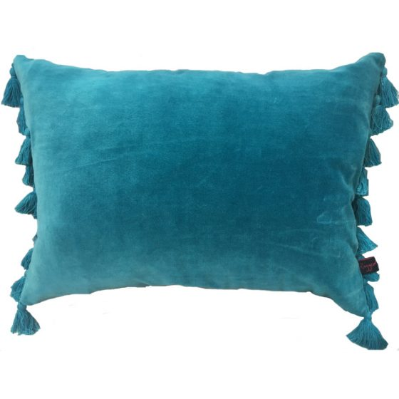 Teal Velvet Tassle Cushion