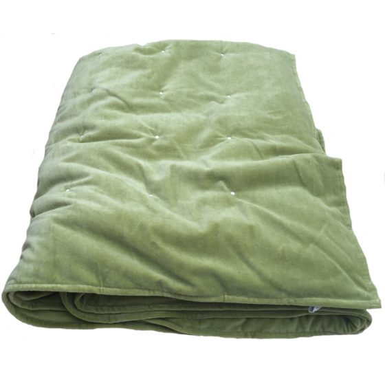 kiwi lime green velvet blanket