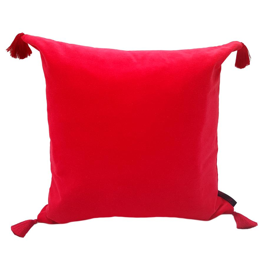 red velvet tassel cushion